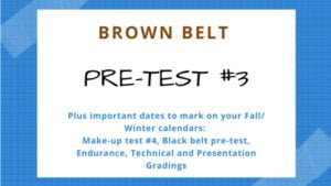 Brown Belt Testing #3