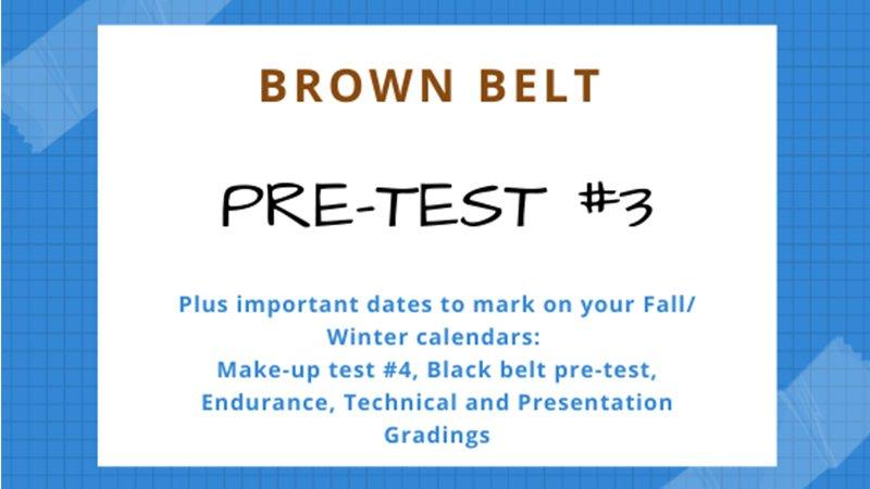 Brown Belt Testing #3